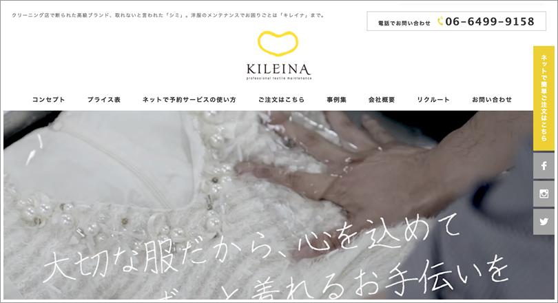 キレイナの公式ホームページ画像